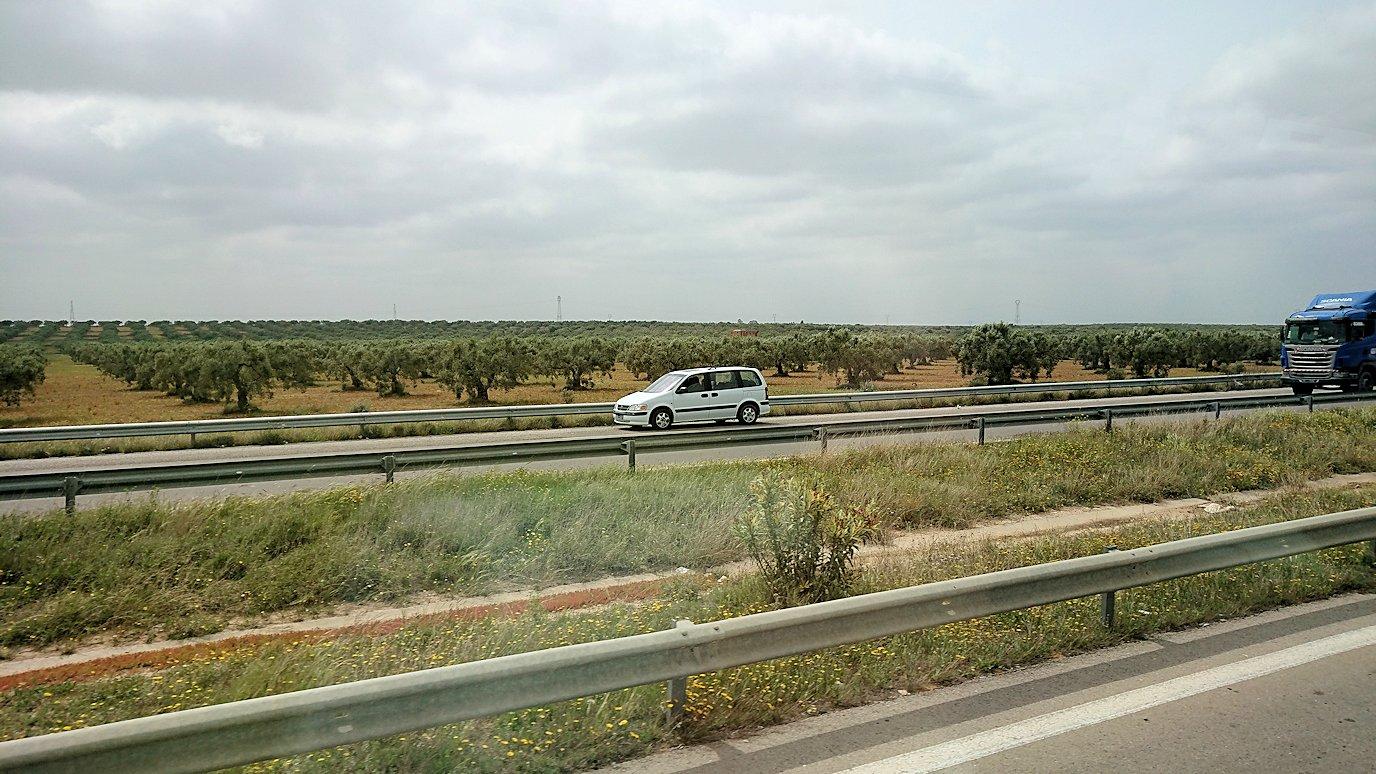 チュニジア・エルジェムからバスに乗ってスースに移動します4