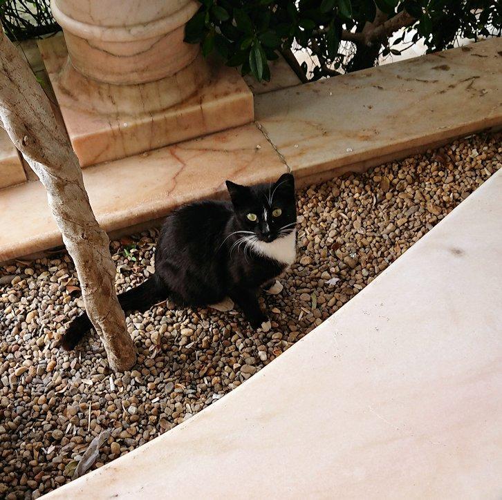 チュニジアのスースの街にある「マルハバ ロイヤル サレム」ホテルに到着3