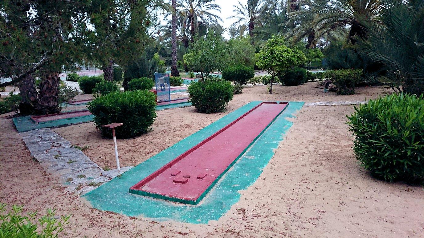 チュニジアのスースの街にある「マルハバ ロイヤル サレム」ホテルで朝敷地内を散策6