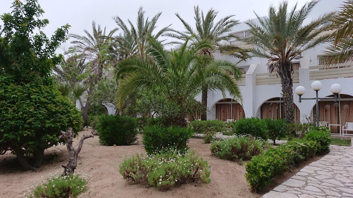 チュニジアのスースの街にある「マルハバ ロイヤル サレム」ホテルで朝敷地内を散策8