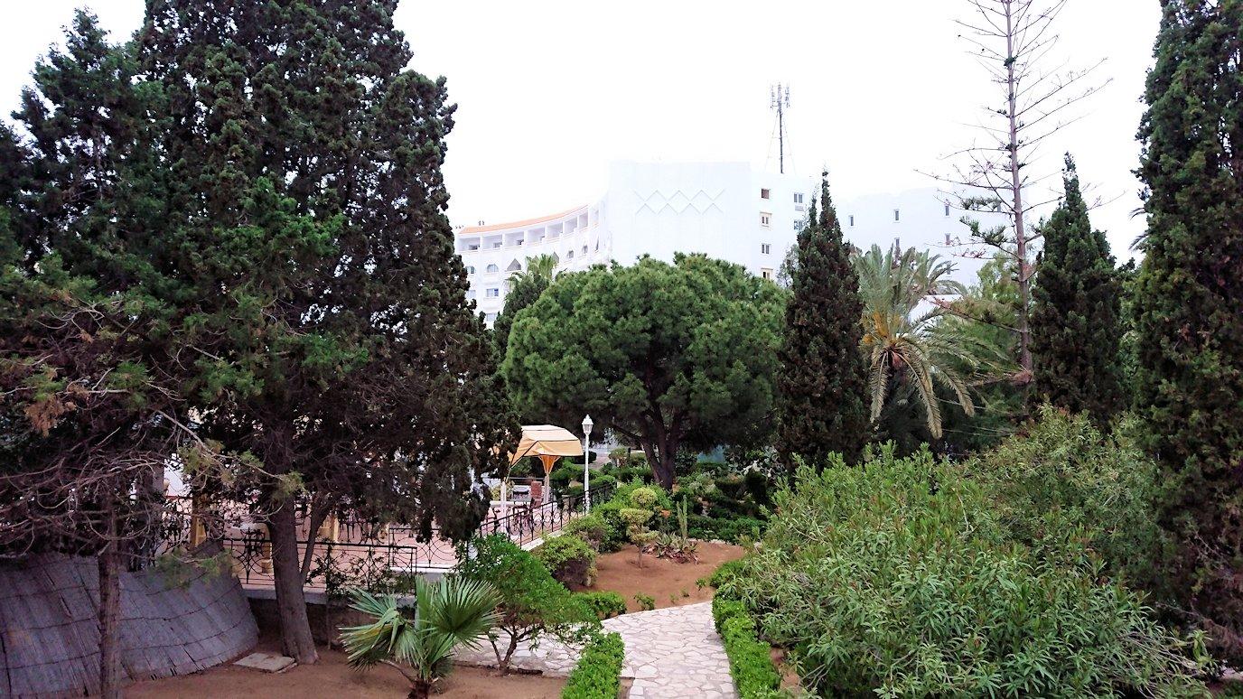 チュニジアのスースの街にある「マルハバ ロイヤル サレム」ホテルで朝敷地内を散策9