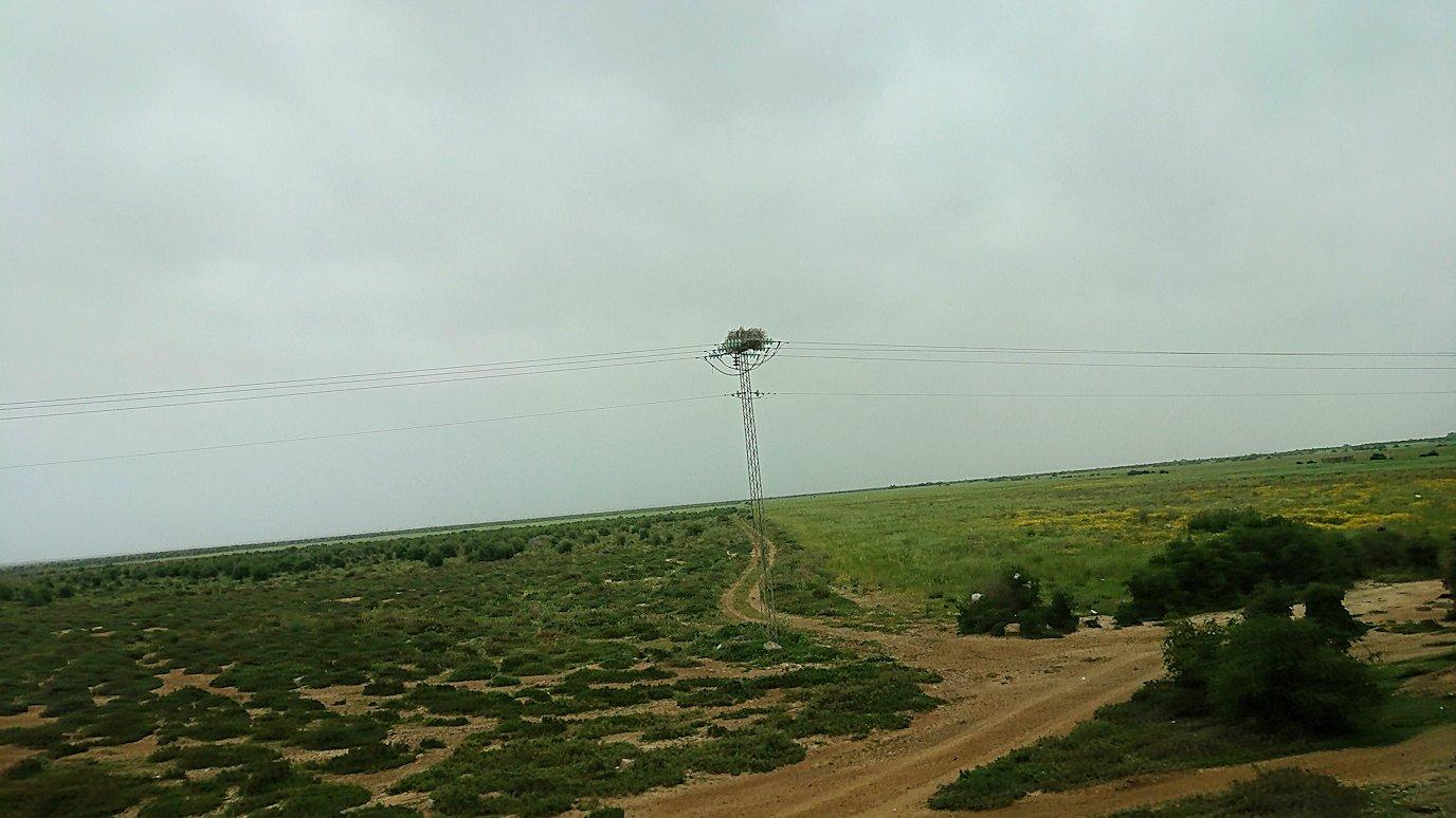 チュニジアのスースの街にある「マルハバ ロイヤル サレム」ホテルからドゥッガ遺跡に向けて出発9