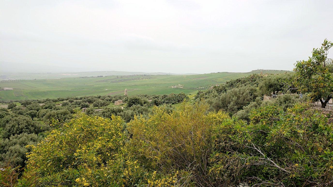 チュニジアのドゥッガ遺跡にて