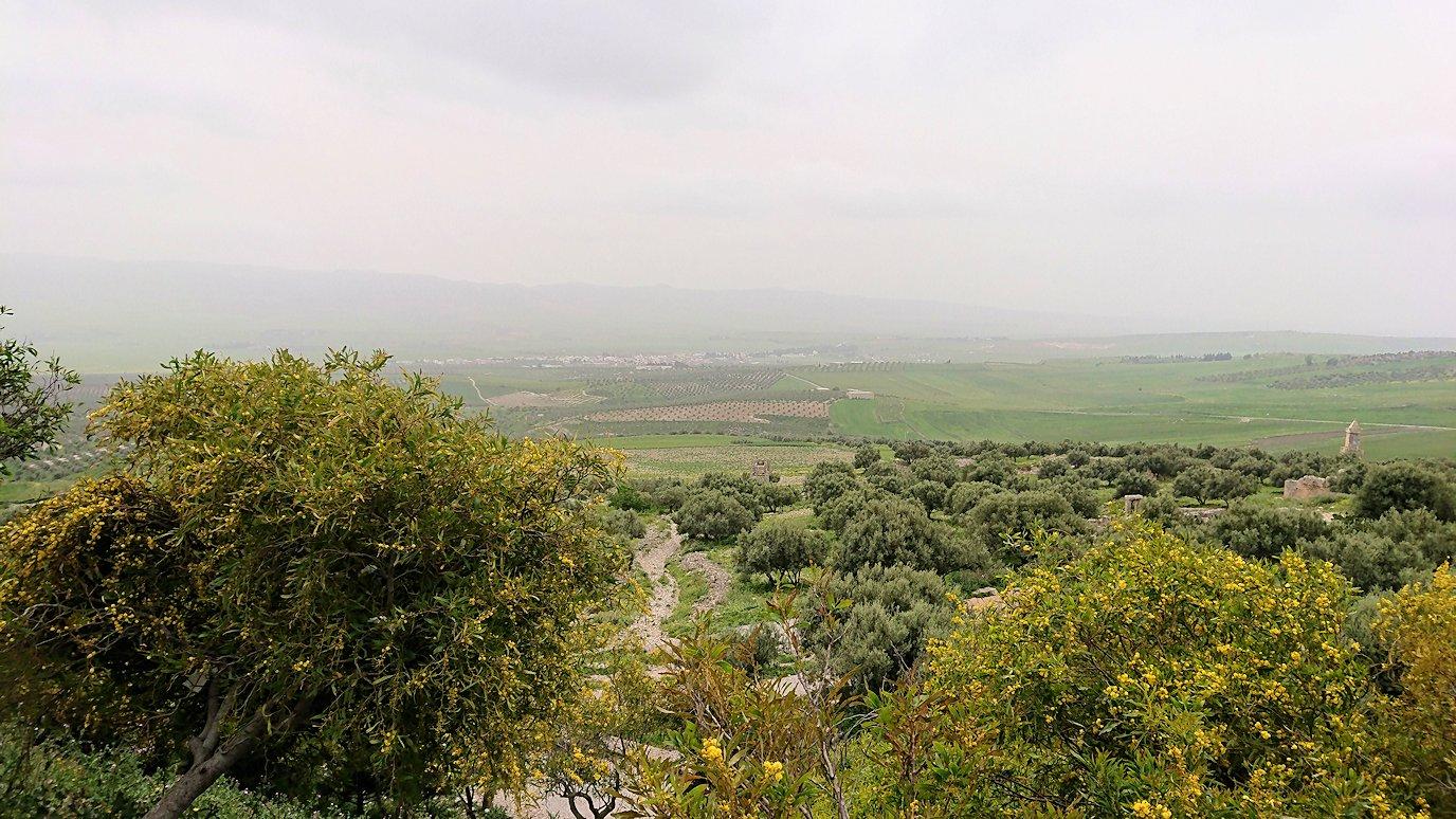 チュニジアのドゥッガ遺跡にて1