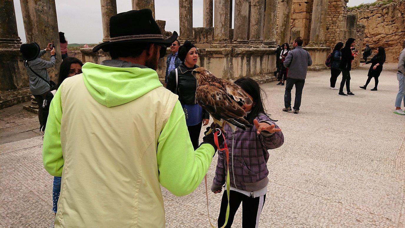 チュニジアのドゥッガ遺跡にて7