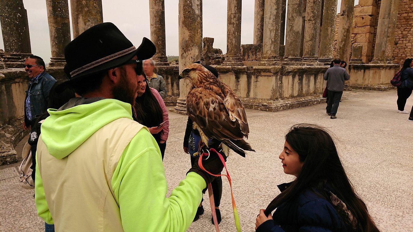 チュニジアのドゥッガ遺跡にて8
