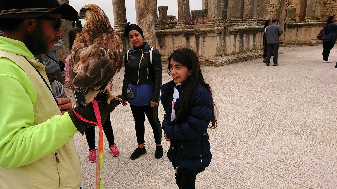 チュニジアのドゥッガ遺跡にて9