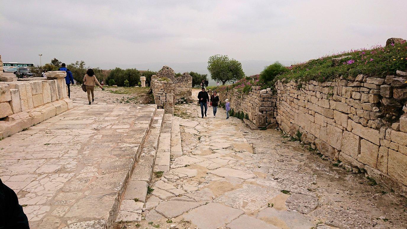 チュニジアのドゥッガ遺跡で奥に進みます