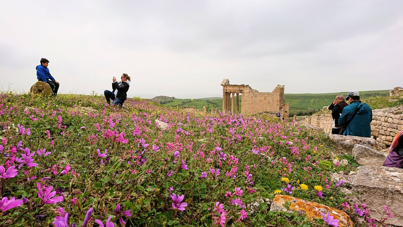 チュニジアのドゥッガ遺跡で奥に進みます3