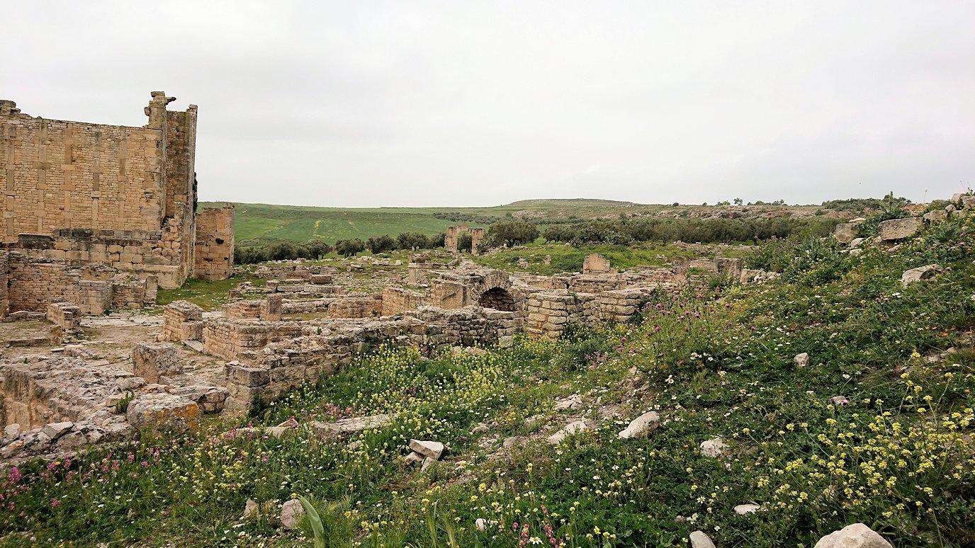 チュニジアのドゥッガ遺跡で奥に進んだ風の広場にて