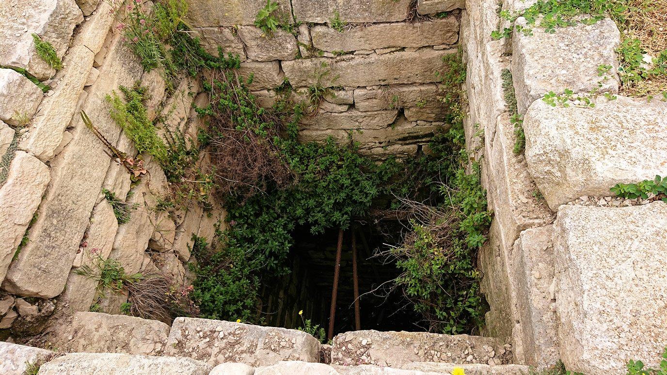 チュニジアのドゥッガ遺跡で奥に進んだ神殿近くで写真を撮る5