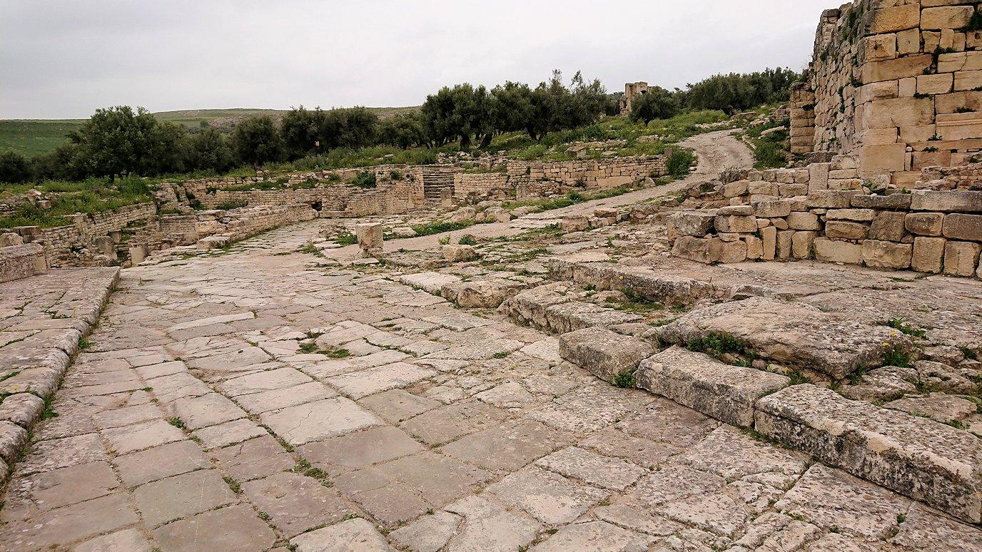 チュニジアのドゥッガ遺跡でどんどん進んで行きます