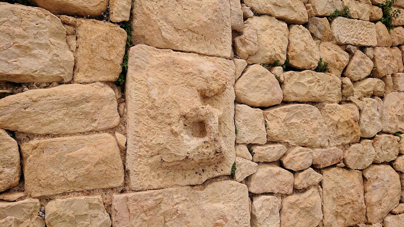 チュニジアのドゥッガ遺跡で見学3
