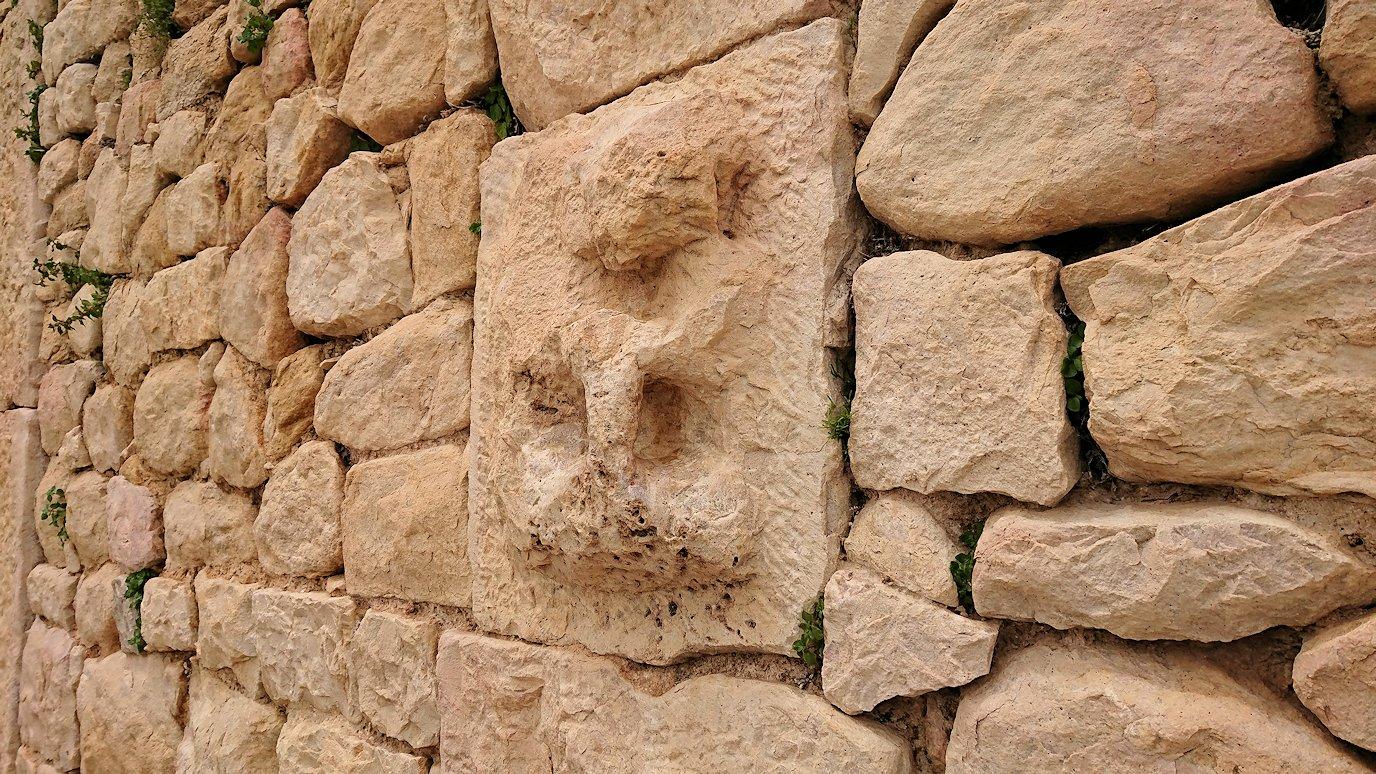 チュニジアのドゥッガ遺跡で見学4