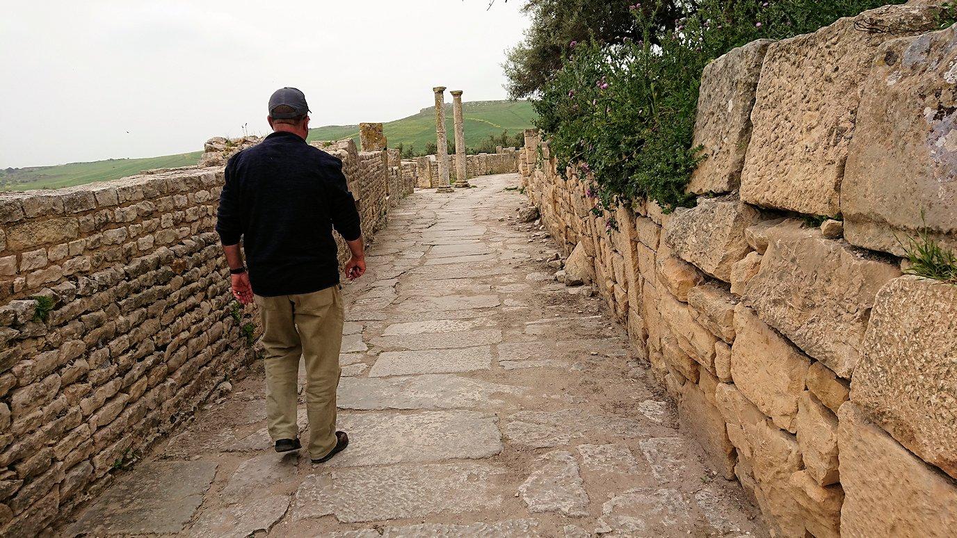 チュニジアのドゥッガ遺跡内を散策5