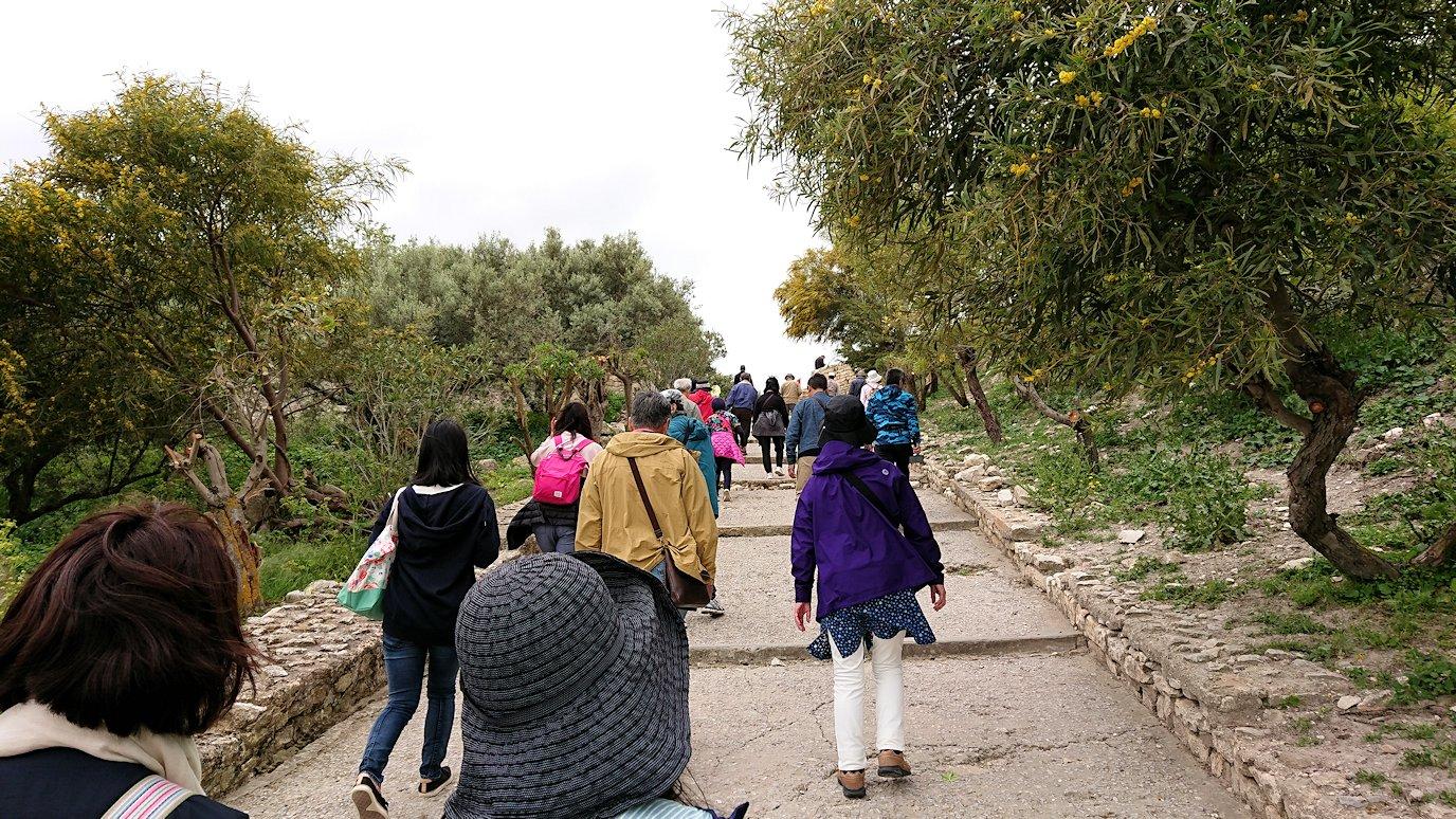 チュニジアのドゥッガ遺跡を満喫5