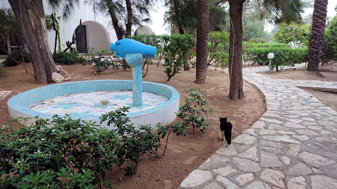チュニジア:スースのホテルで朝日を楽しみにホテル内を散策5