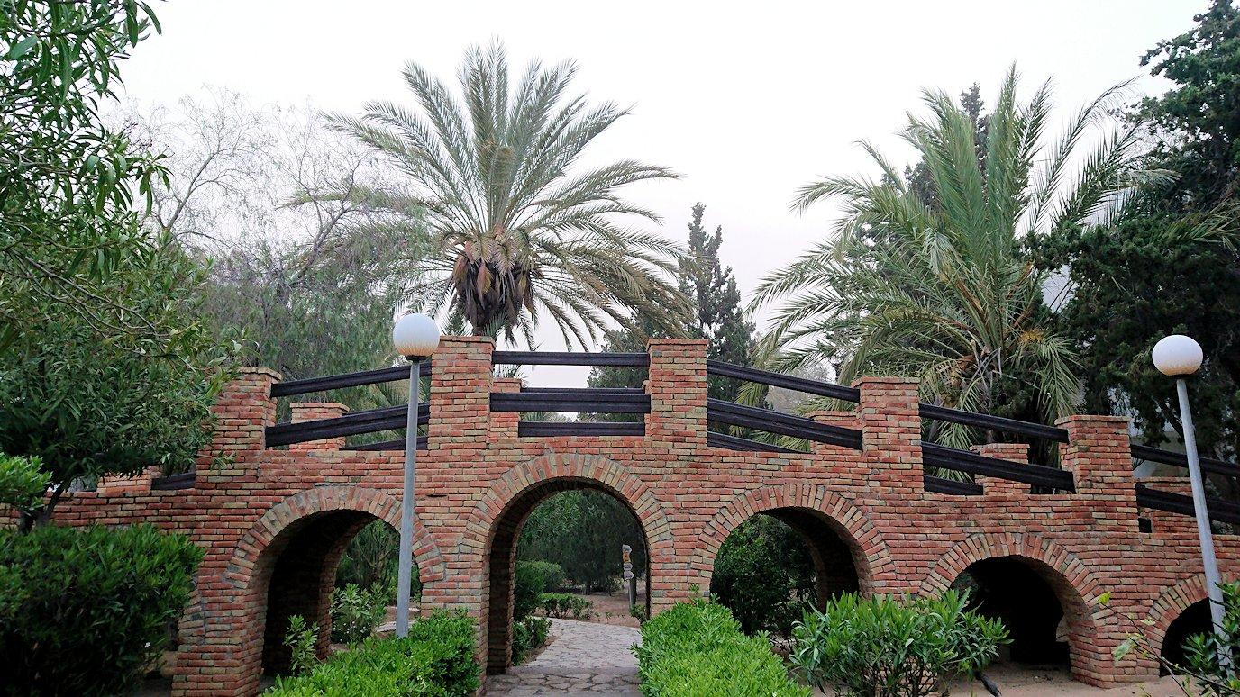 チュニジア:スースのホテルで朝日を楽しみにホテル内を散策8