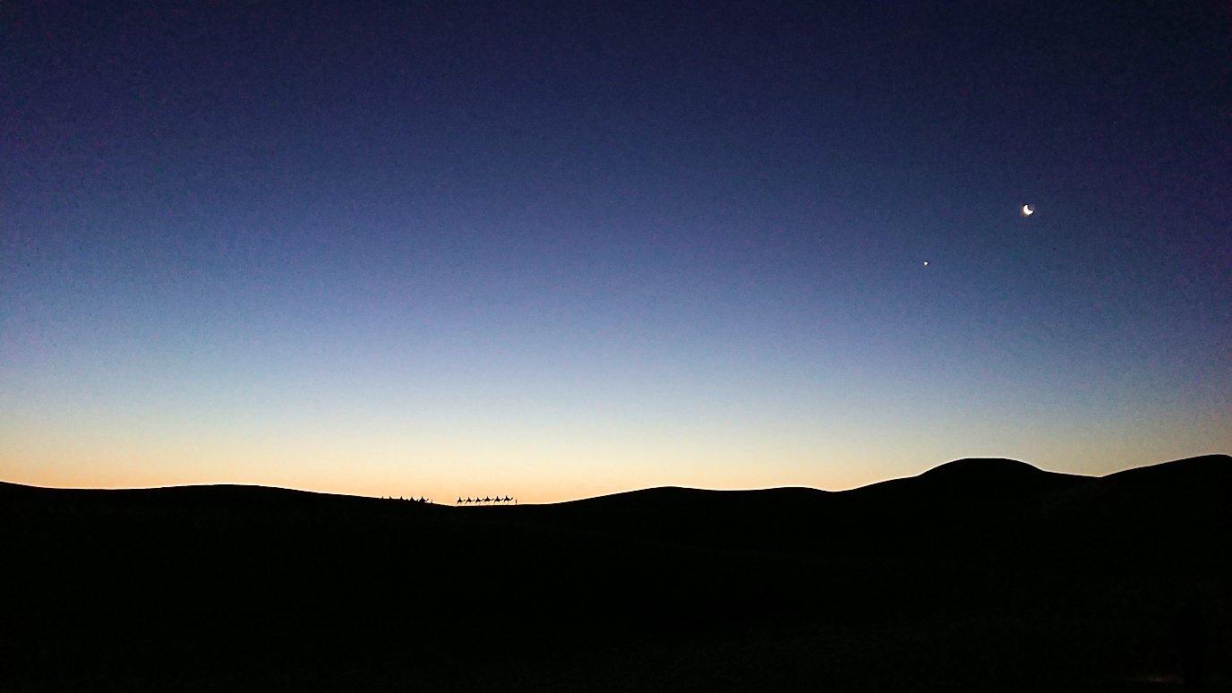サハラ砂漠で星空観賞しに歩く様子6
