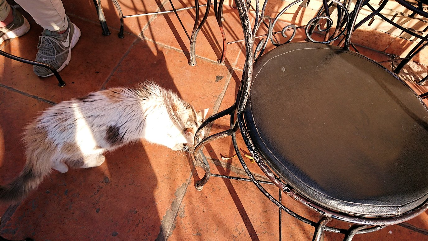 モロッコ・マラケシュでジャマ・エル・フナ広場のカフェで休憩8