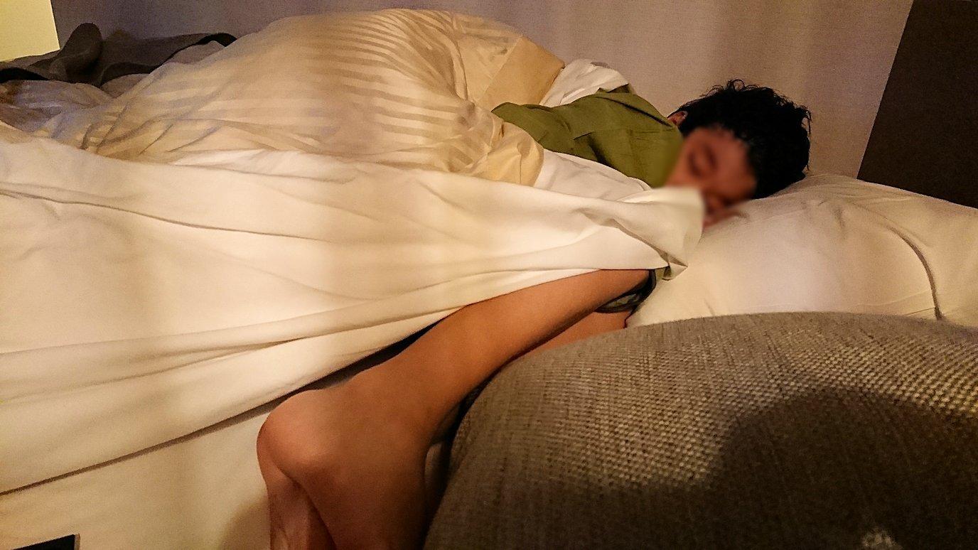 函館市内で函館市内のハセガワストアでやきとり弁当を食べてホテルに戻り温泉に入りくつろぐ4