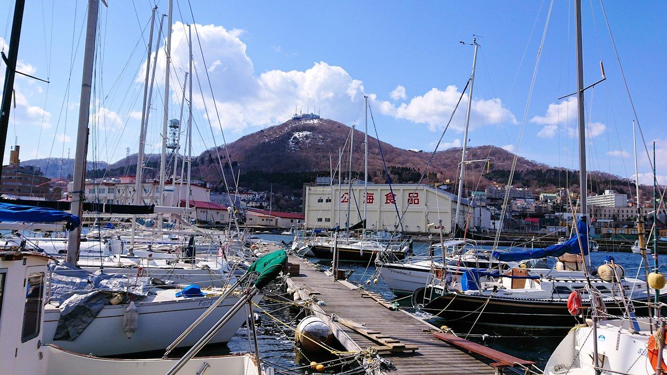 函館最終日は海沿いを歩いて緑の島に到着4