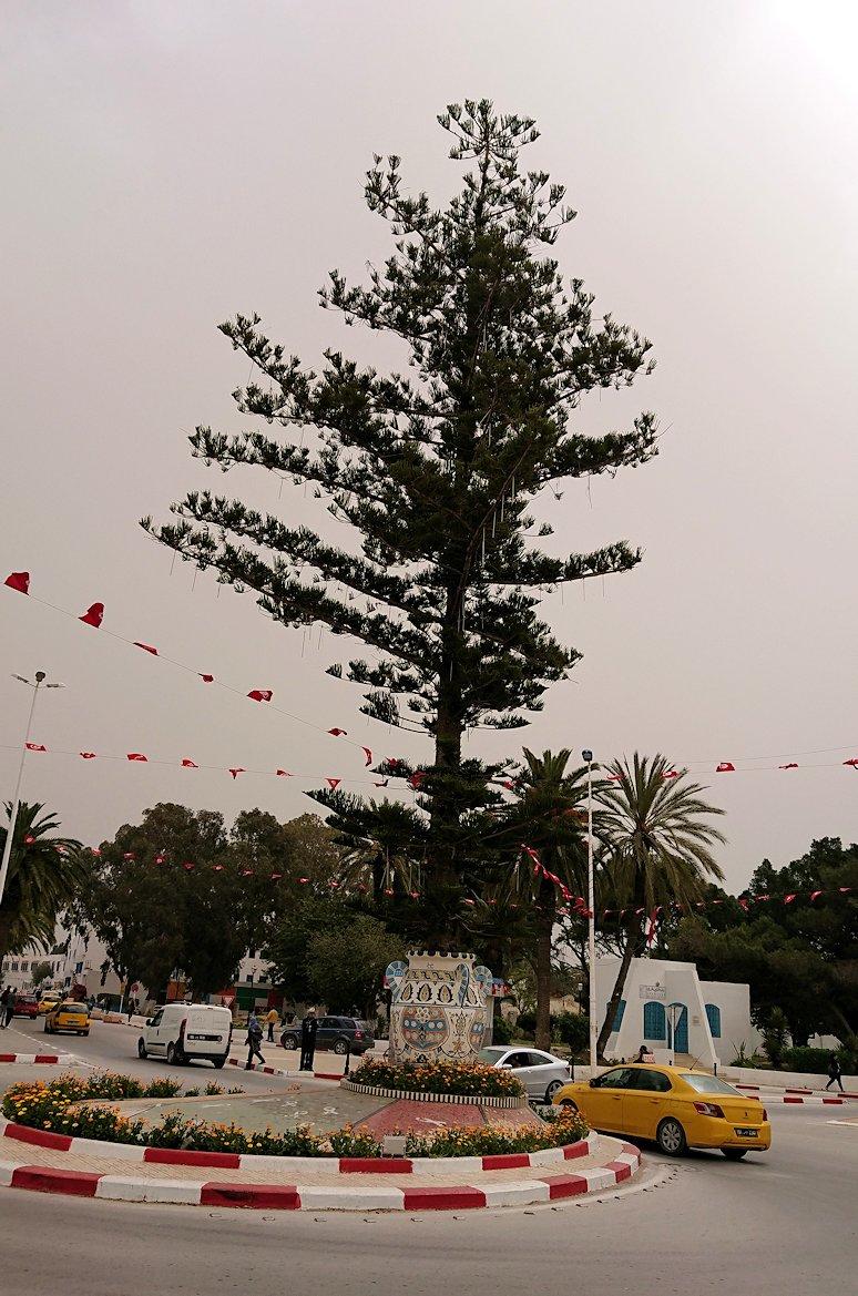 チュニジア:ナブールの街の1月14日広場周辺にて