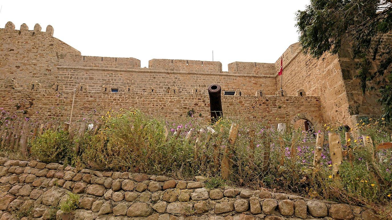 チュニジア:ケリビアの城塞跡に到着9