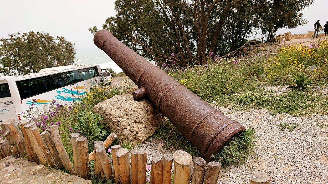 チュニジア:ケリビアの城塞跡に到着4