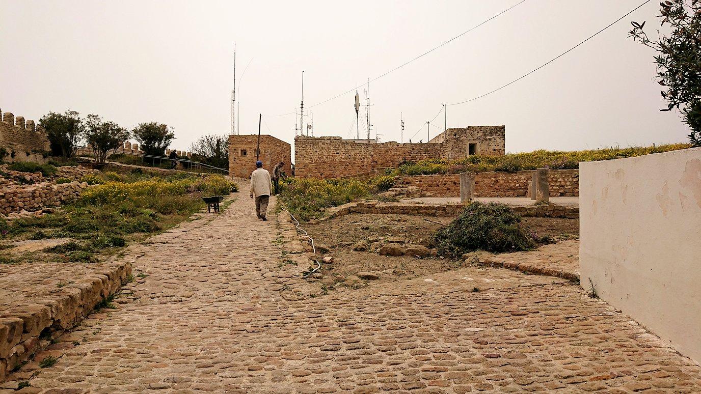 チュニジア:ケリビアの城塞跡に入っていきます9