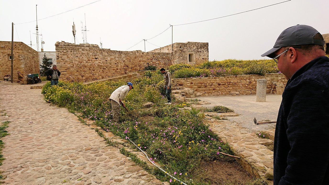 チュニジア:ケリビアの城塞跡の様子は4
