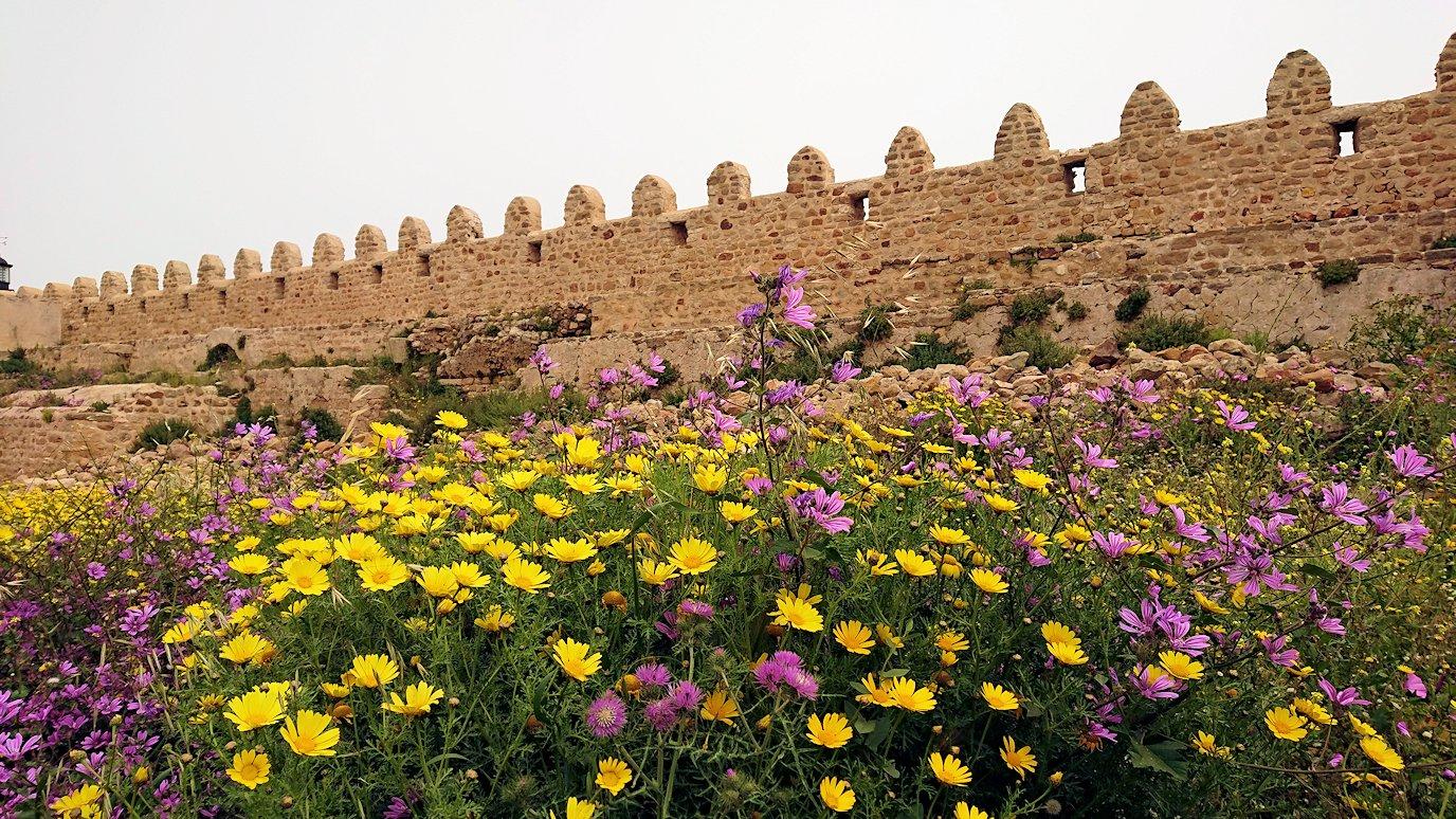 チュニジア:ケリビアの城塞跡の様子は7