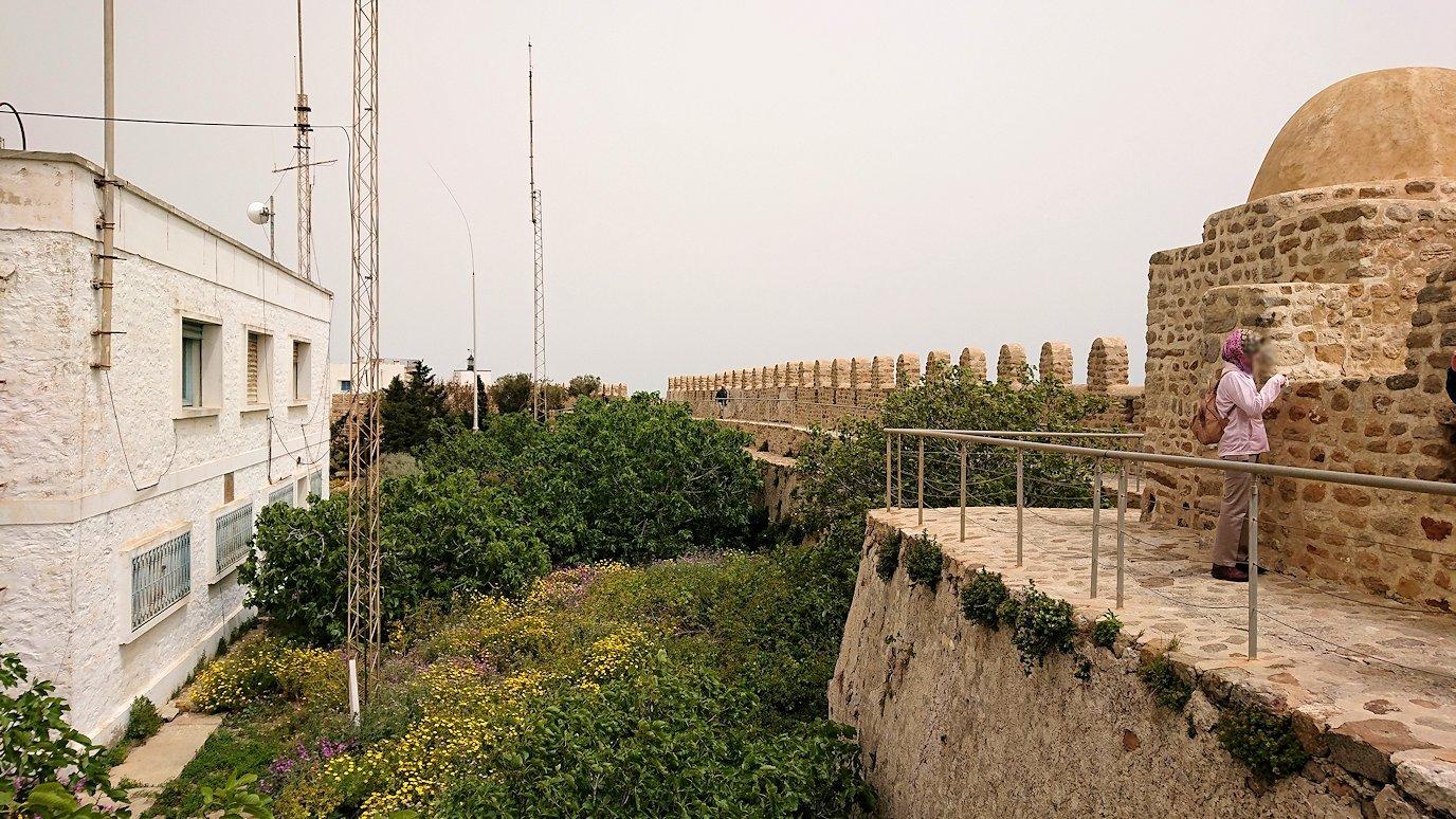 チュニジア:ケリビアの城塞内を散策3