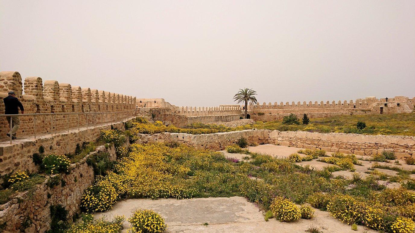 チュニジア:ケリビアの城塞跡で楽しむ