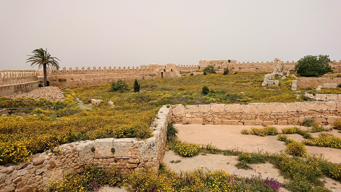 チュニジア:ケリビアの城塞跡で楽しむ2