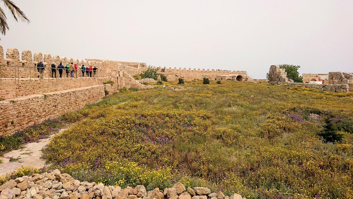 チュニジア:ケリビアの城塞跡の見学はまだまだ続く1