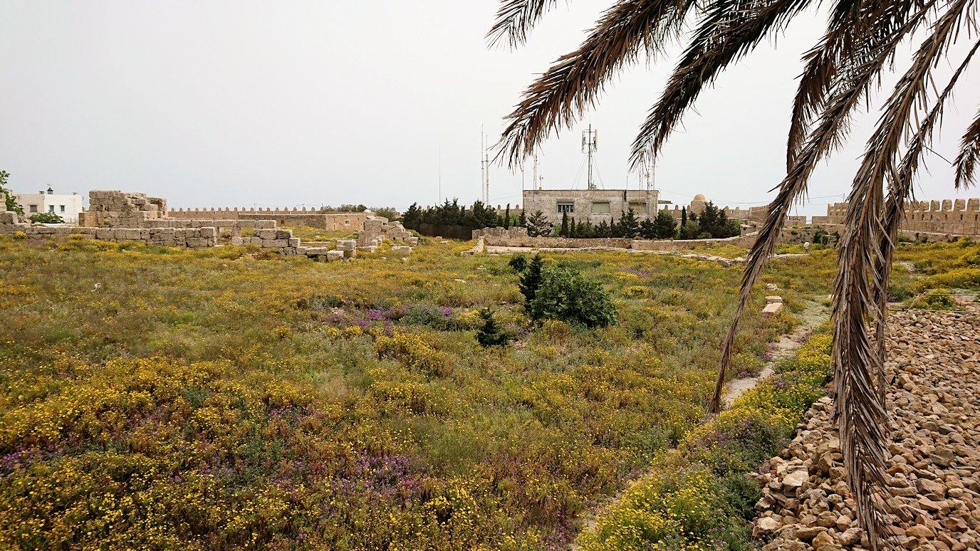 チュニジア:ケリビアの城塞跡の見学はまだまだ続く4