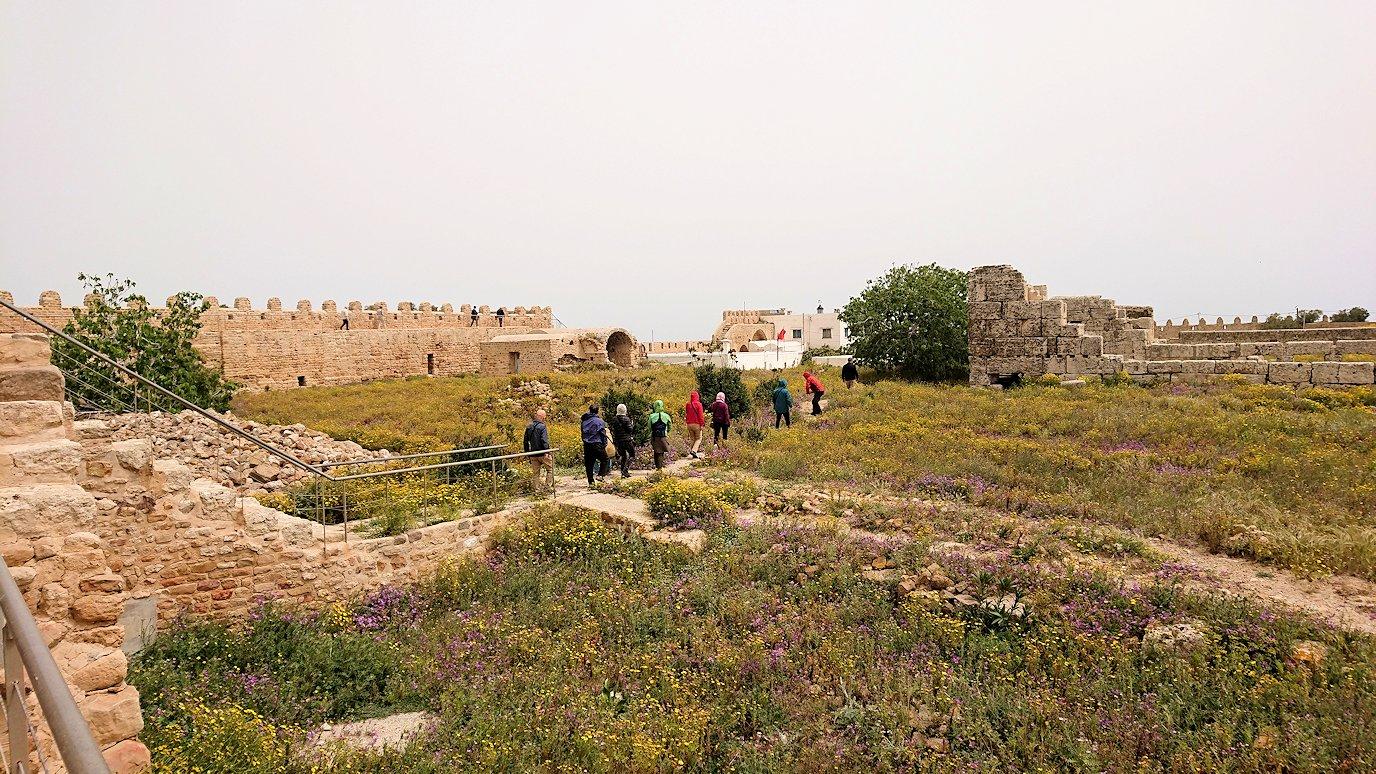 チュニジア:ケリビアの城塞跡の見学はまだまだ続く5
