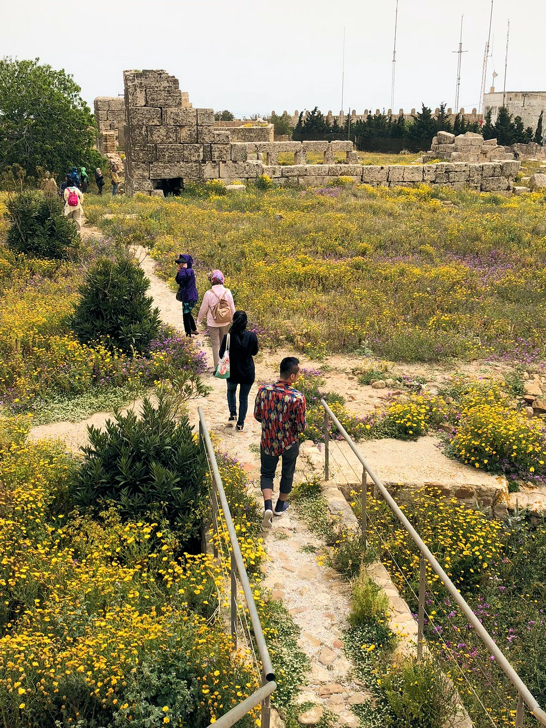 チュニジア:ケリビアの城塞跡の見学はまだまだ続く9
