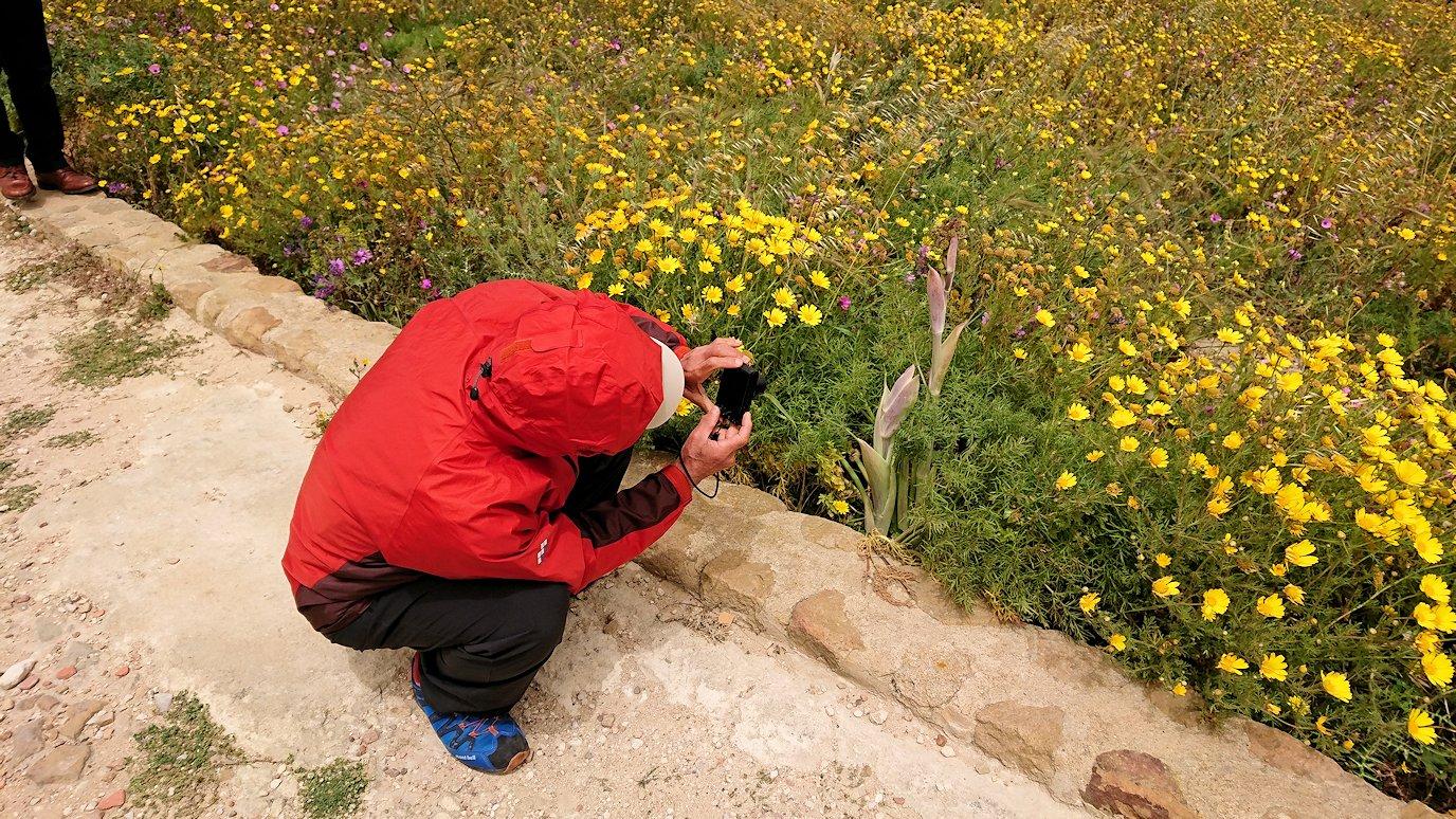 チュニジア:ケリビアの城塞跡内の観光終了?!