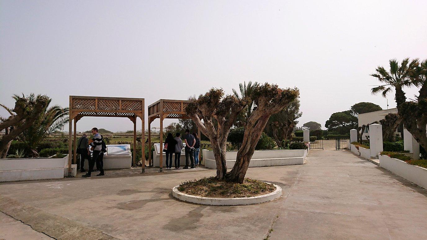 チュニジア:ボン岬のケルクアン遺跡に入場