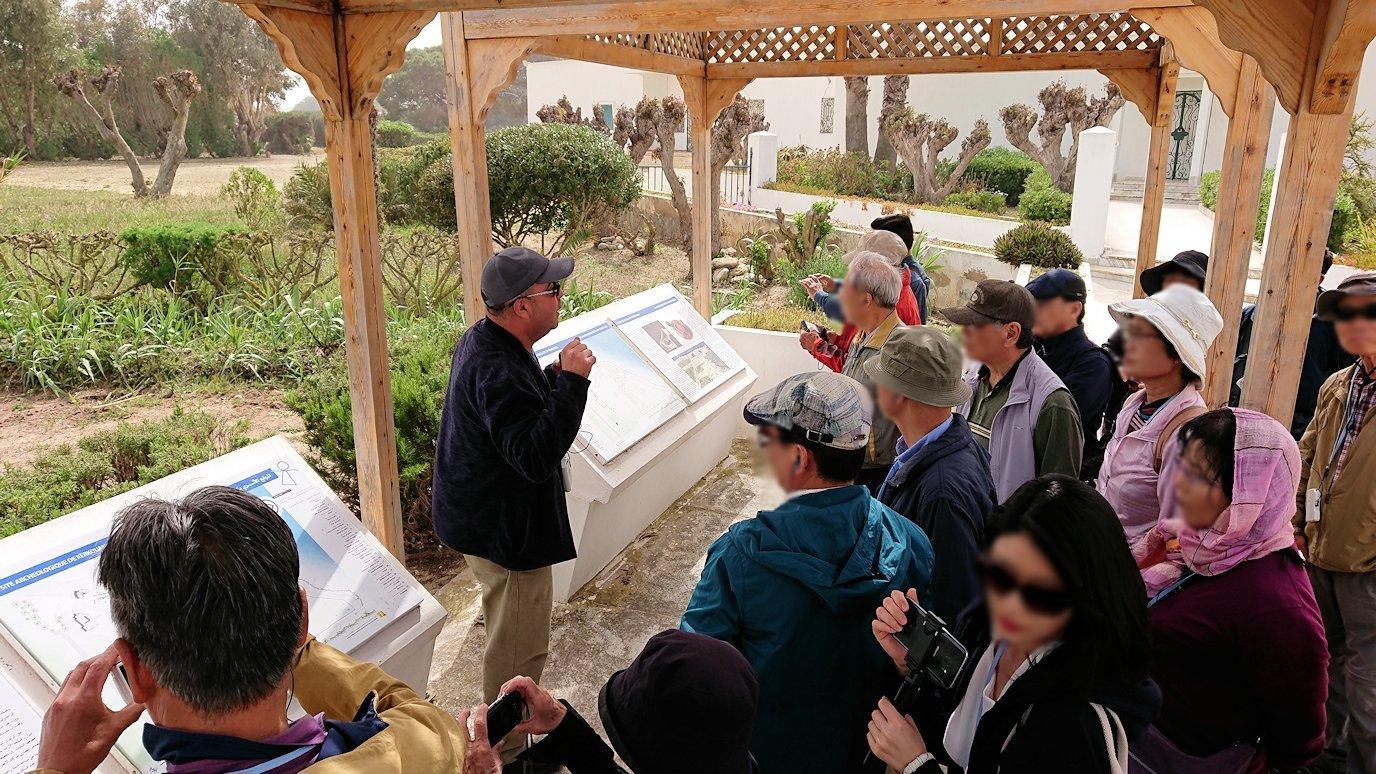 チュニジア:ボン岬のケルクアン遺跡に入場4