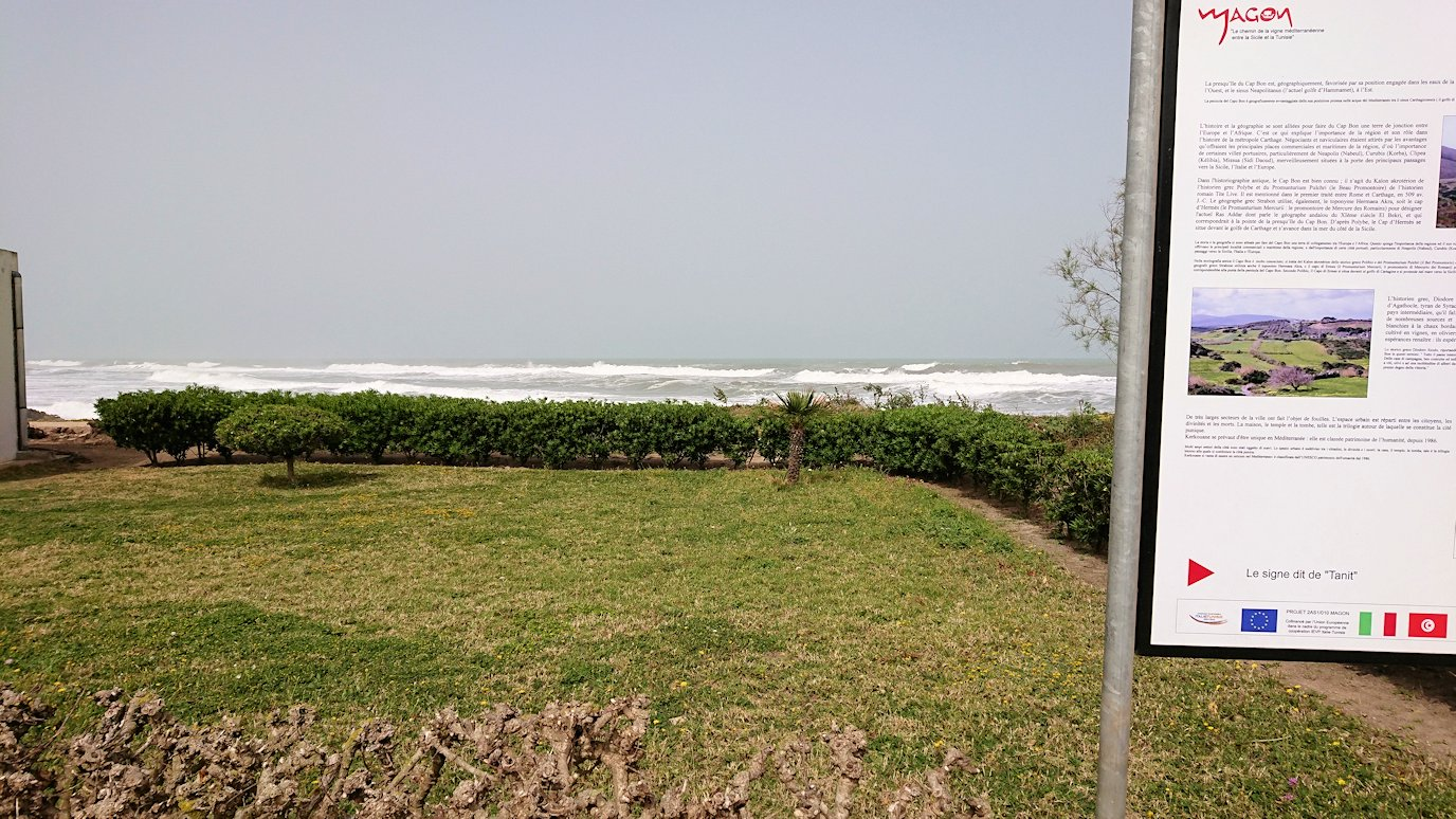チュニジア:ボン岬のケルクアン遺跡内を進んで行く