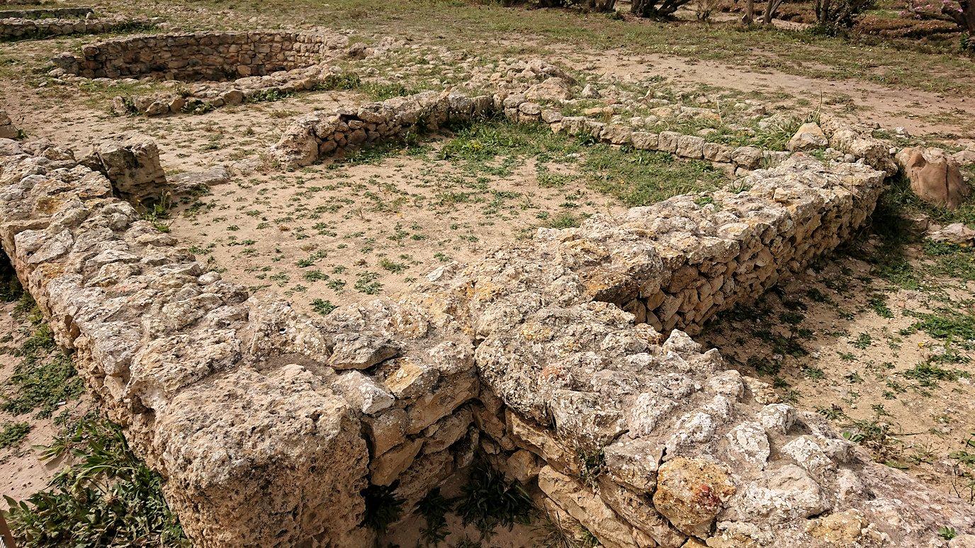 チュニジア:ボン岬のケルクアン遺跡を見学していく1