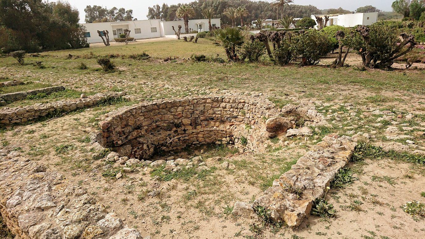 チュニジア:ボン岬のケルクアン遺跡を見学していく2