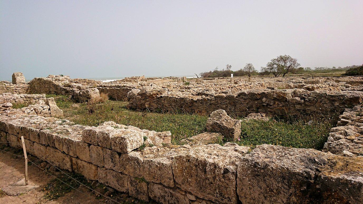 チュニジア:ボン岬のケルクアン遺跡を見学していく3