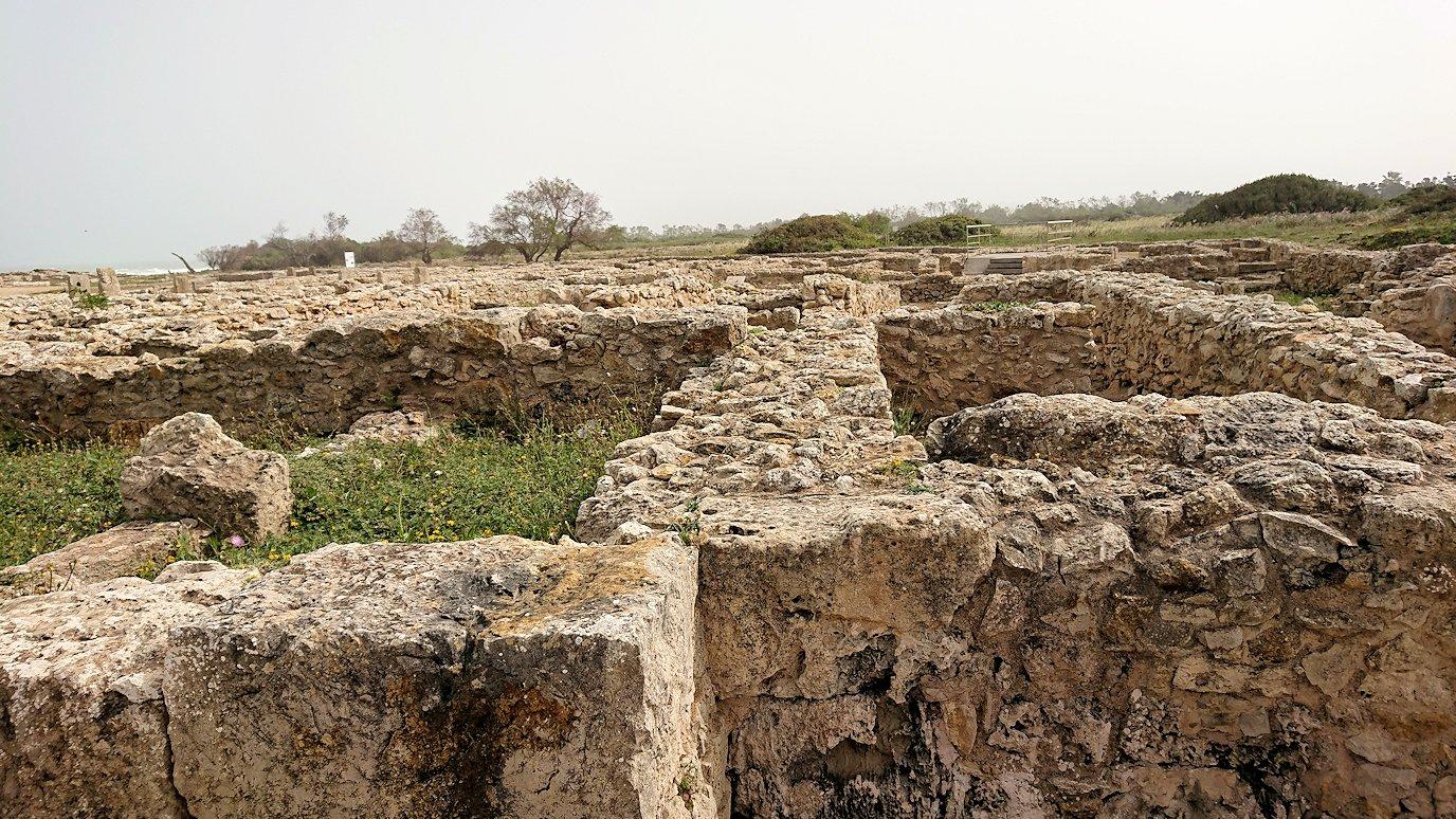 チュニジア:ボン岬のケルクアン遺跡を見学していく4