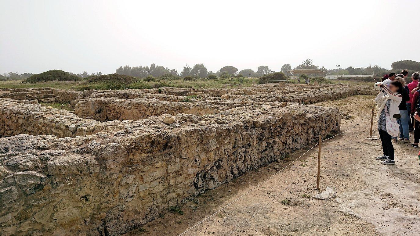 チュニジア:ボン岬のケルクアン遺跡を見学していく5