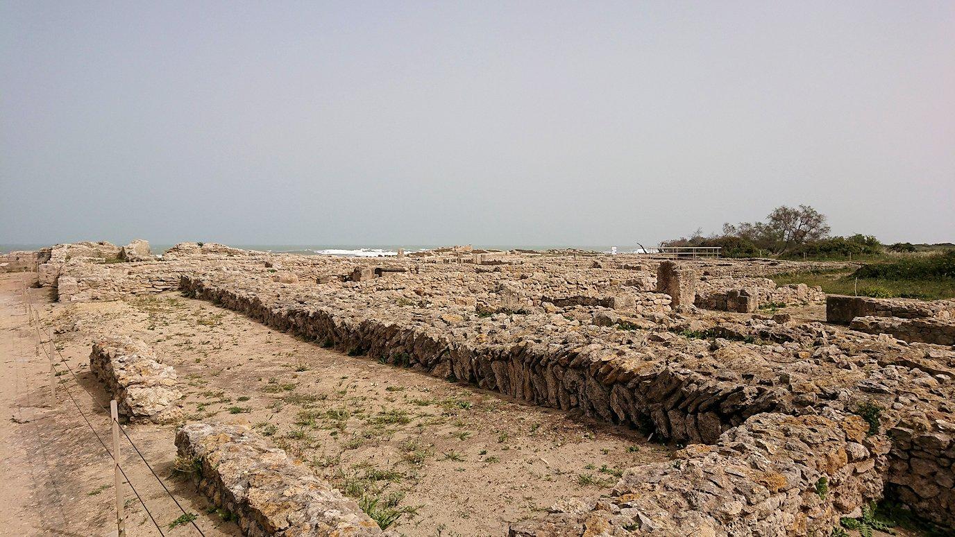 チュニジア:ボン岬のケルクアン遺跡を見学していく6