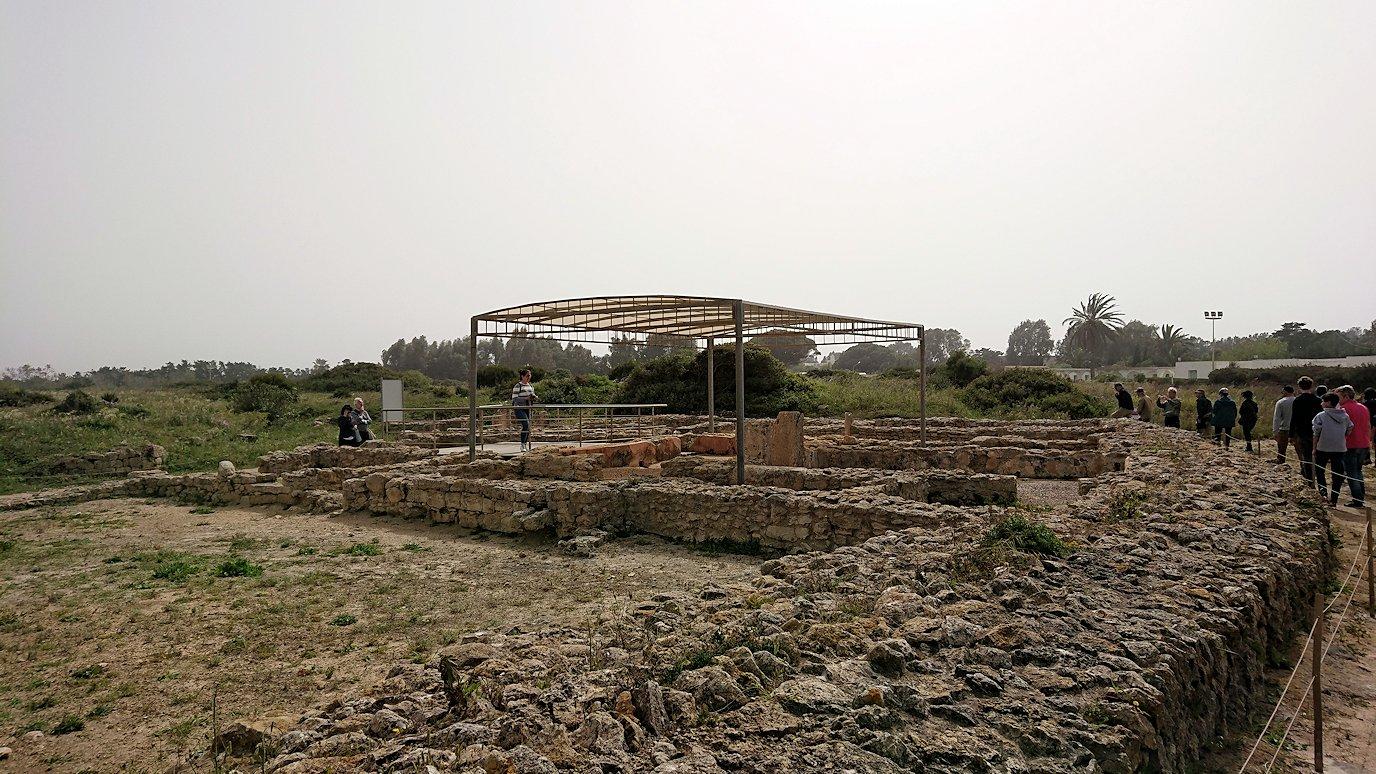 チュニジア:ボン岬のケルクアン遺跡を見学していく7